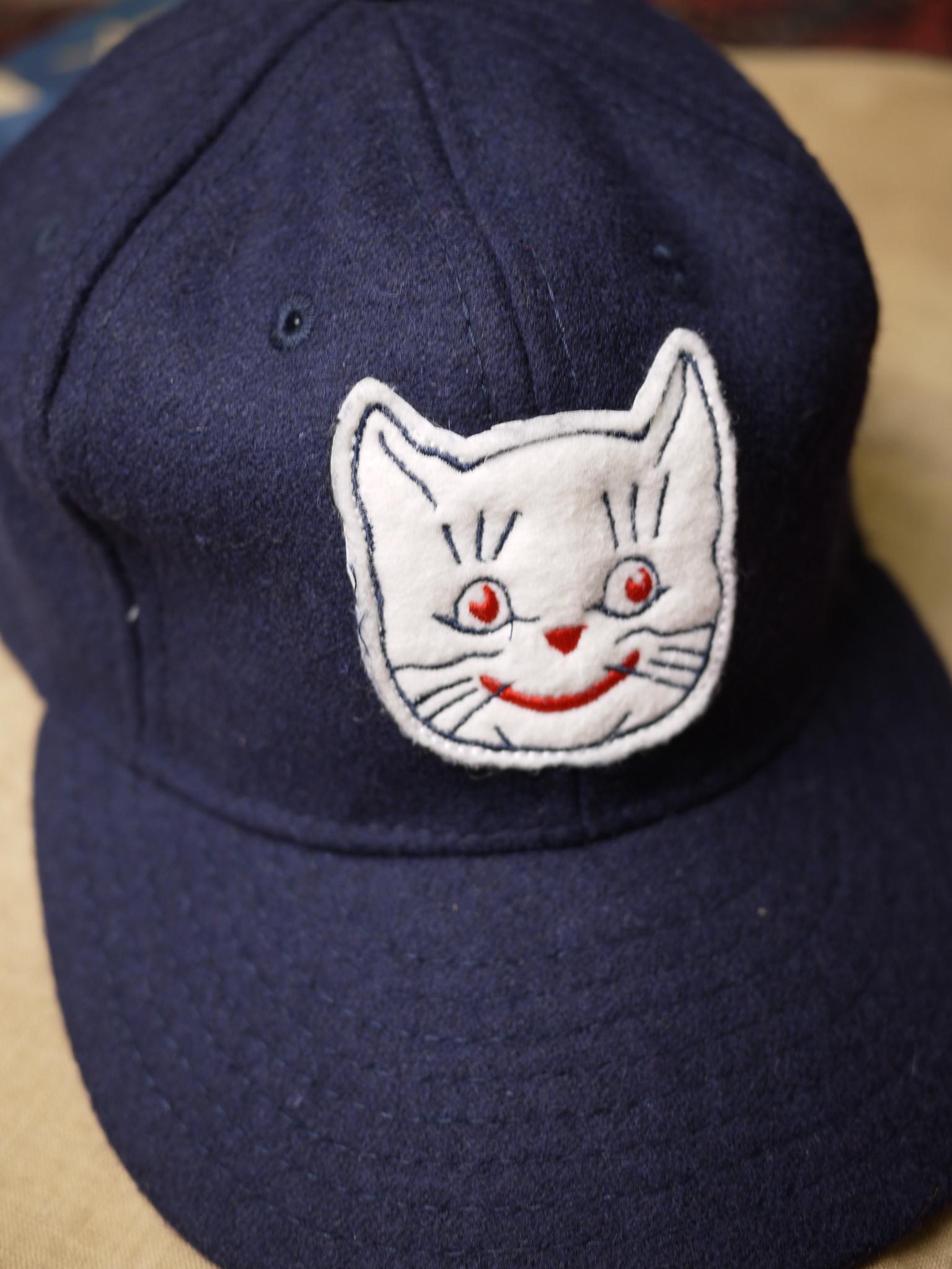 catzSW